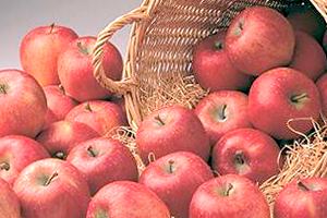 今週のおすすめ1番「りんご」のイメージ